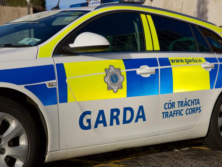 1490471164376.jpg--kildare_gardai_issue_road_safety_warning_to_motorists_travelling_to_punchestown_festival.jpg
